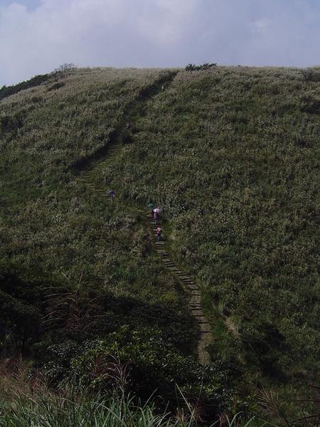 20061015爬爬團大屯山連峰行 040.jpg