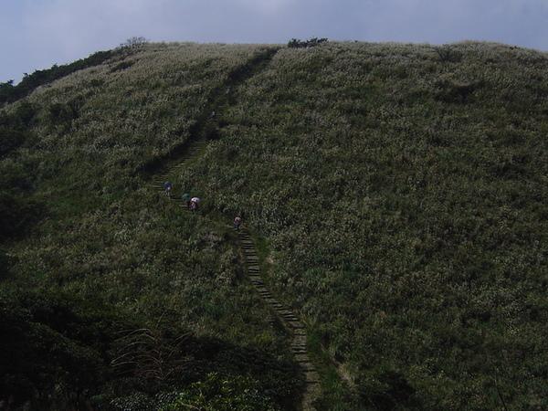 20061015爬爬團大屯山連峰行 041.jpg