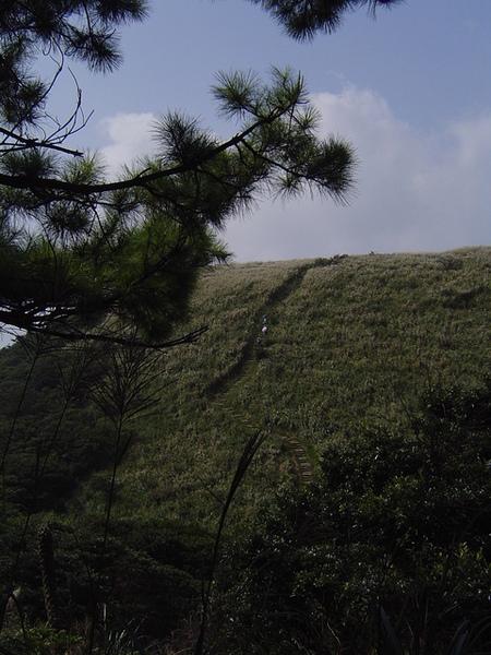 20061015爬爬團大屯山連峰行 042.jpg
