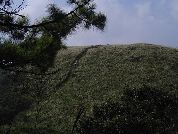 20061015爬爬團大屯山連峰行 043.jpg