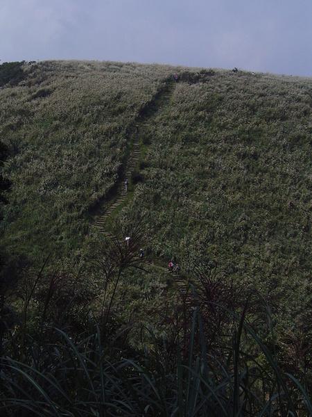 20061015爬爬團大屯山連峰行 045.jpg