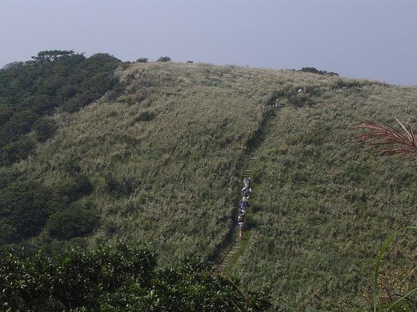 20061015爬爬團大屯山連峰行 050.jpg