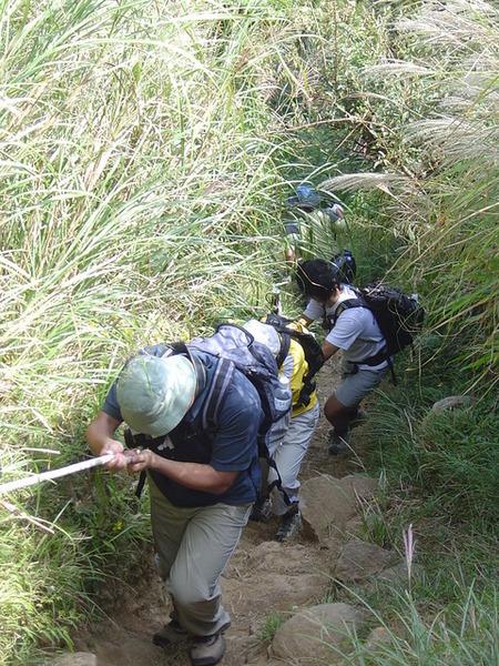20061015爬爬團大屯山連峰行 069.jpg