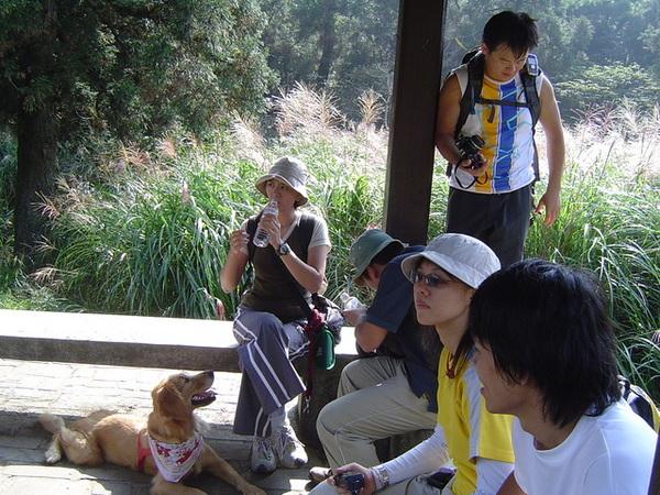 20061015爬爬團大屯山連峰行 070.jpg