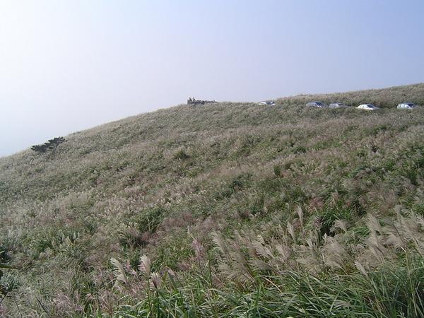 20061015爬爬團大屯山連峰行 078.jpg