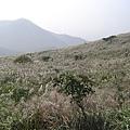 20061015爬爬團大屯山連峰行 079.jpg