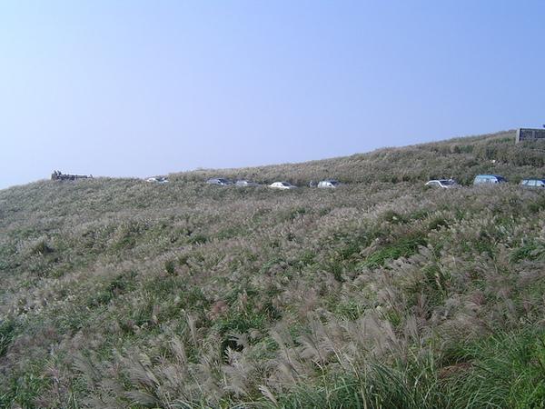 20061015爬爬團大屯山連峰行 081.jpg