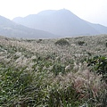 20061015爬爬團大屯山連峰行 082.jpg