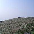 20061015爬爬團大屯山連峰行 083.jpg