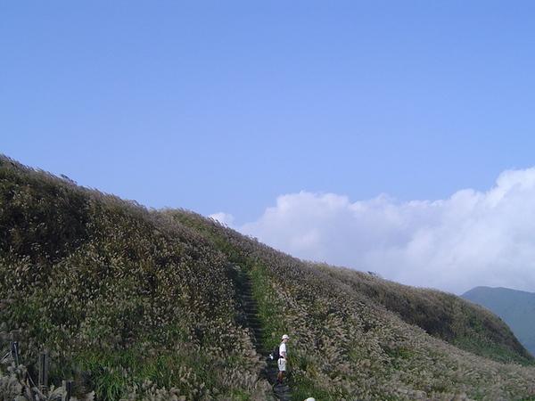 20061015爬爬團大屯山連峰行 089.jpg