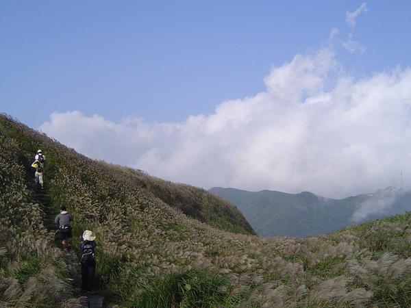 20061015爬爬團大屯山連峰行 091.jpg