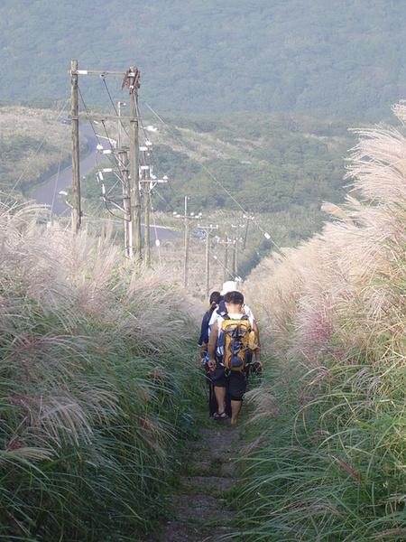 20061015爬爬團大屯山連峰行 092.jpg