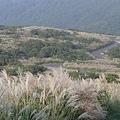 20061015爬爬團大屯山連峰行 094.jpg