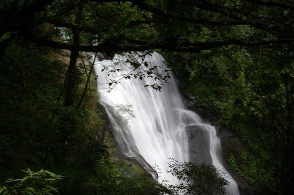 20070618內洞森林遊樂區 053.jpg