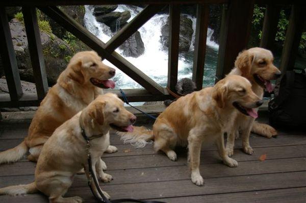 20070618內洞森林遊樂區 056.jpg
