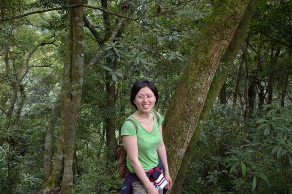 20070618內洞森林遊樂區 072.jpg