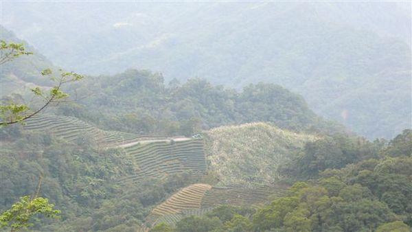 20080108坪林單車探路行 010.jpg