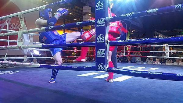 2016 世界泰拳錦標賽
