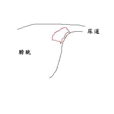 Huang20120813.JPG