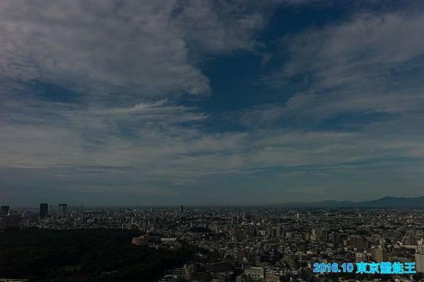 L1021874.jpg