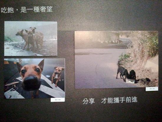 2011-10-30 15.31.56.jpg