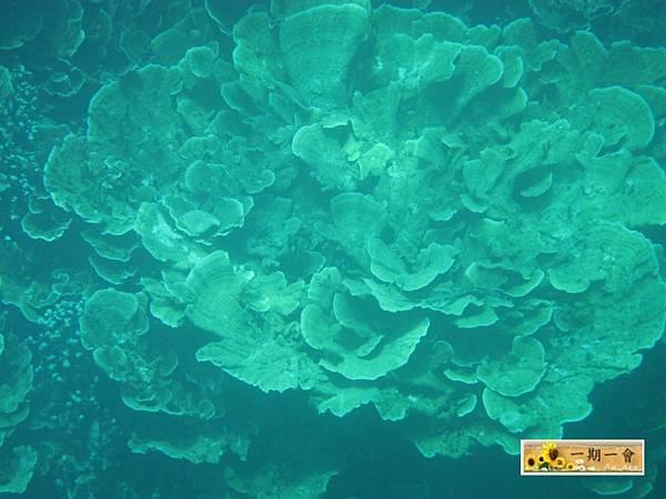Rock islands 123 123