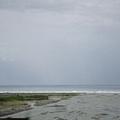花蓮的海岸有大浪