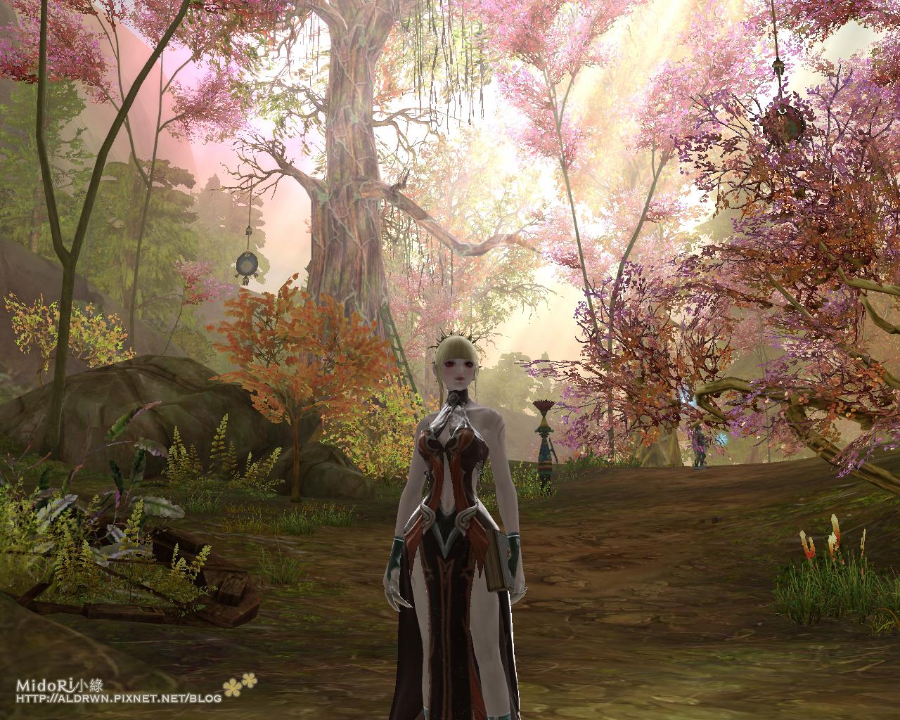 魔族-超美櫻花樹林3.jpg