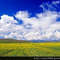 psuCA369B16.jpg