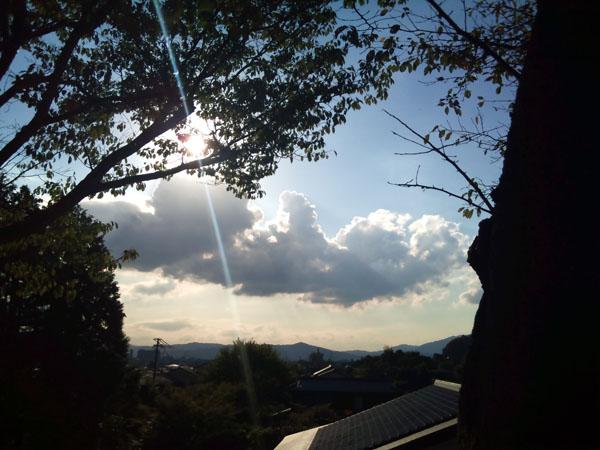 DSC_0088_s.jpg