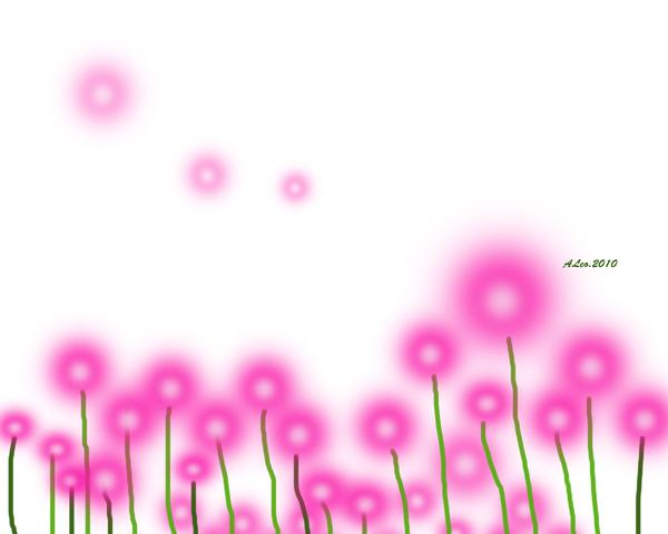 紫色蒲公英.jpg