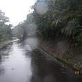 濕滑山路.JPG