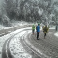 0124_滑溜溜積雪.jpg
