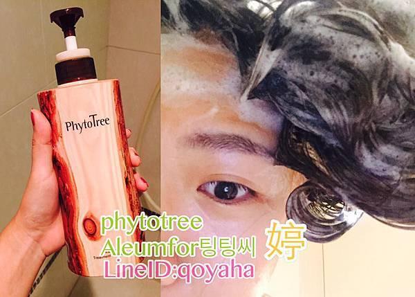|Phytotree hadis 瓜家松樹頭皮淨化髮浴 Pine Tree Treatment Shampoo