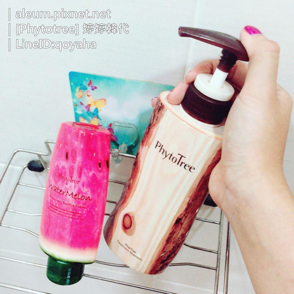 松樹頭皮淨化髮浴|韓國洗髮精開箱『Phytotree hadis瓜家松樹頭皮淨化髮浴 PineTreeTreatmentShampoo』(aleumfor韓代)