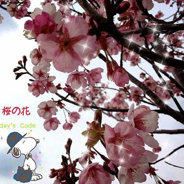2013-04-14-20-18-24_deco