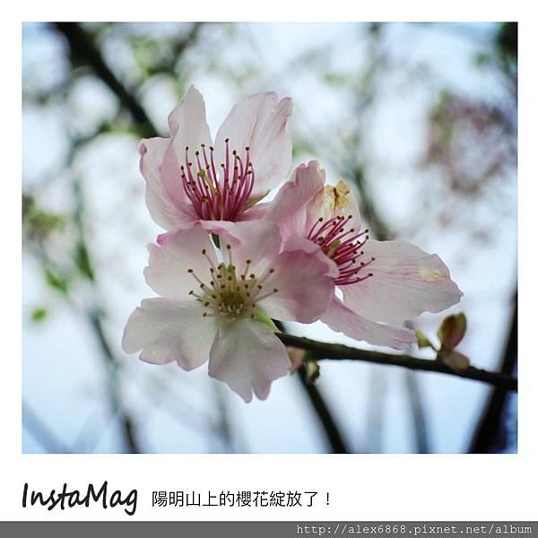 IMG_1872.JPG