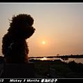 2011-03-13_215台南安平海邊.jpg
