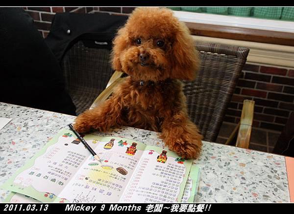 2011-03-26_007河岸森林.jpg