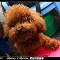 2011-03-27_018家裡罰站.jpg