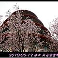 2010-03-13_015.jpg