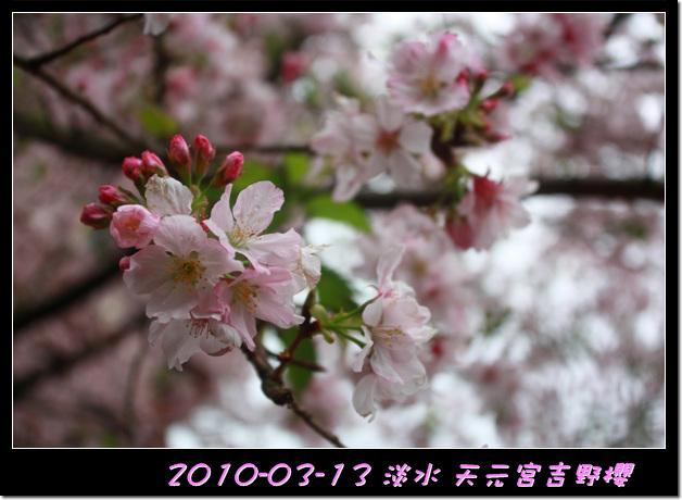 2010-03-13_020.jpg