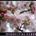 2010-03-13_025.jpg