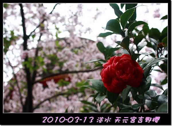 2010-03-13_028.jpg