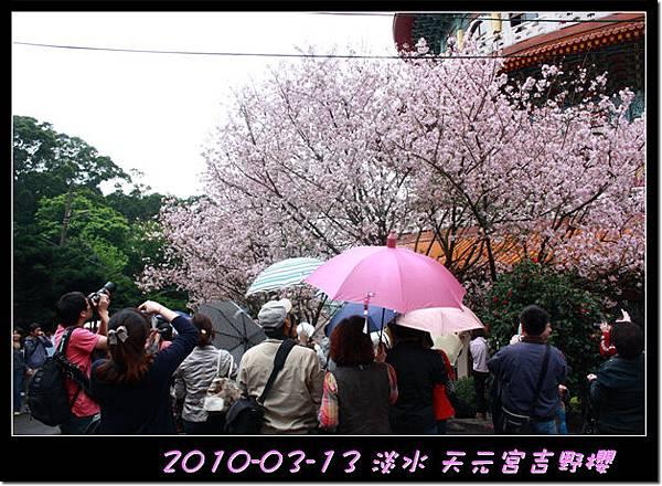 2010-03-13_029.jpg