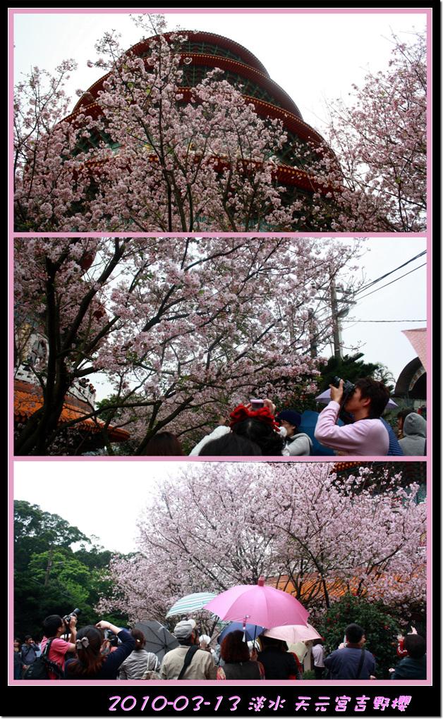 2010-03-13_033c2.jpg