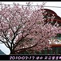 2010-03-13_046.jpg