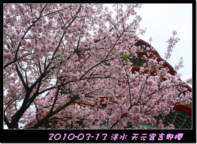 2010-03-13_047.jpg