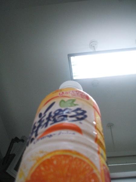 柳橙資.jpg