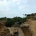 野柳地質公園 (27).JPG